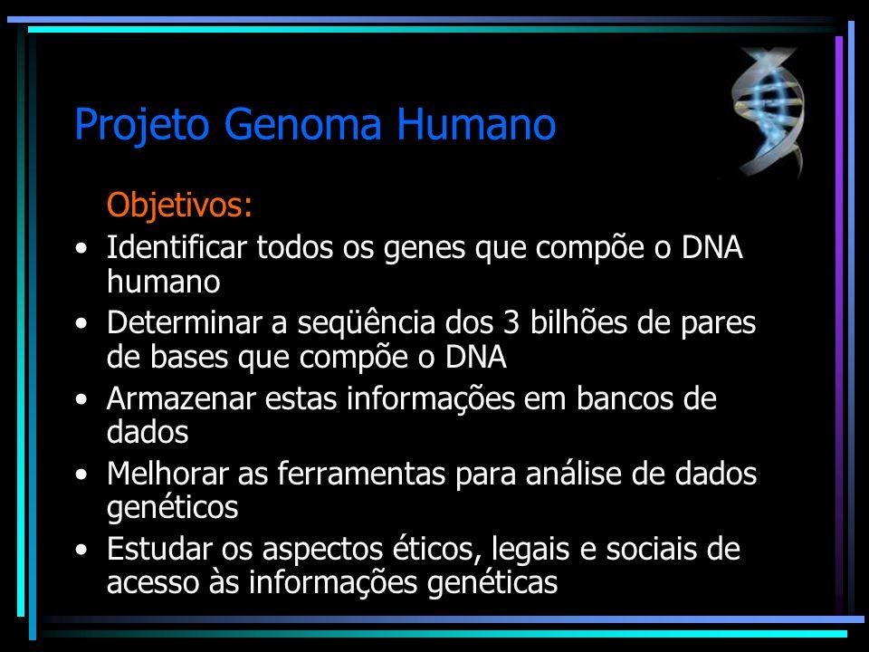 Projeto Genoma Humano Objetivos: Identificar todos os genes que compõe o DNA humano Determinar a seqüência dos 3 bilhões de pares de bases que compõe