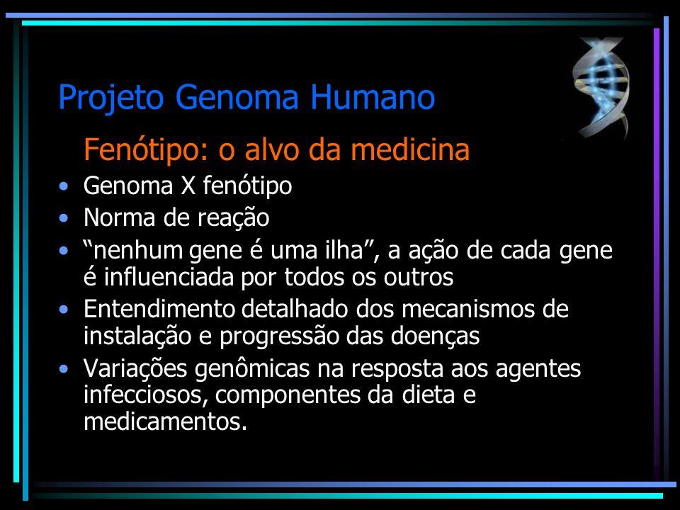 Projeto Genoma Humano Fenótipo: o alvo da medicina Genoma X fenótipo Norma de reação nenhum gene é uma ilha, a ação de cada gene é influenciada por to