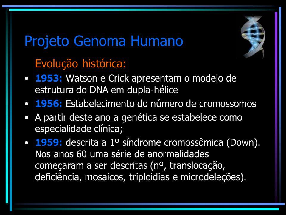 Projeto Genoma Humano Evolução Histórica: 1960-1973: Cromossomo Filadélfia Avanços nas técnicas de identificação de cromossomos, como a citogenética- molecular e a hibridização in situ possibilitaram um avanço na identificação de doenças.