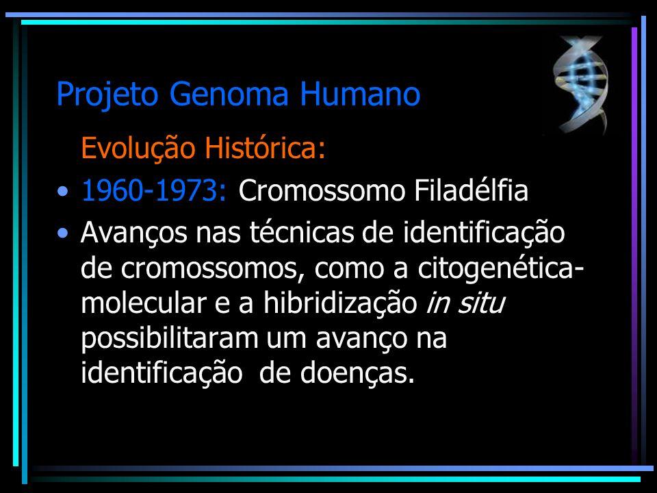 Projeto Genoma Humano Evolução Histórica: 1960-1973: Cromossomo Filadélfia Avanços nas técnicas de identificação de cromossomos, como a citogenética-