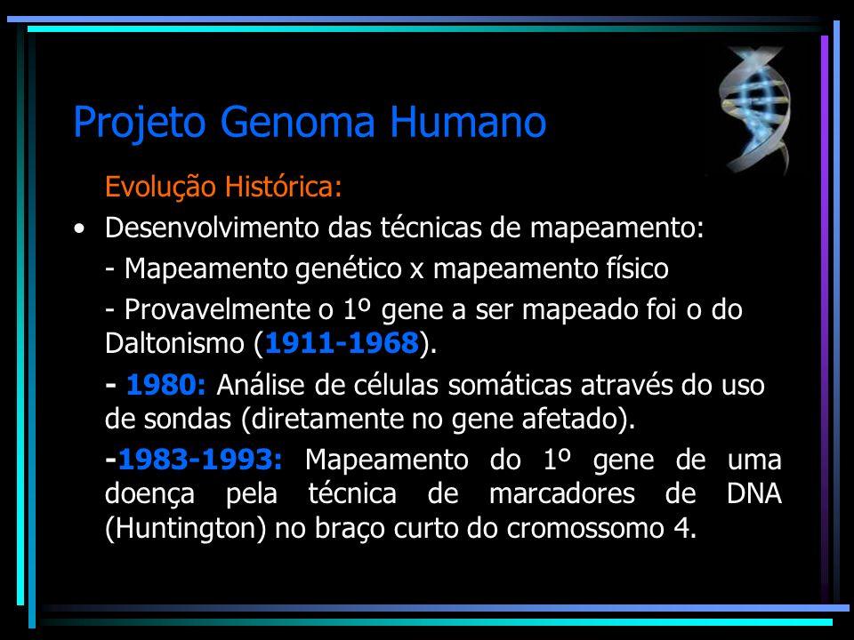 Projeto Genoma Humano Evolução Histórica: Desenvolvimento das técnicas de mapeamento: - Outras doenças importantes puderam ser mapeadas, como em 1986 a Granulomatose Crônica e Distrofia Muscular de Duchenne e em 1989 a Retinoblastia e a Fibrose Cística.