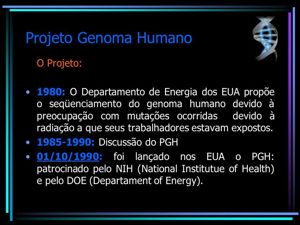 Projeto Genoma Humano O Projeto: 17 países envolvidos: Alemanha, Austrália, Brasil, Canadá, China, Coréia, Dinamarca, EUA, França, Holanda, Israel, Itália, Japão, México, Reino Unido, Rússia, Suécia.