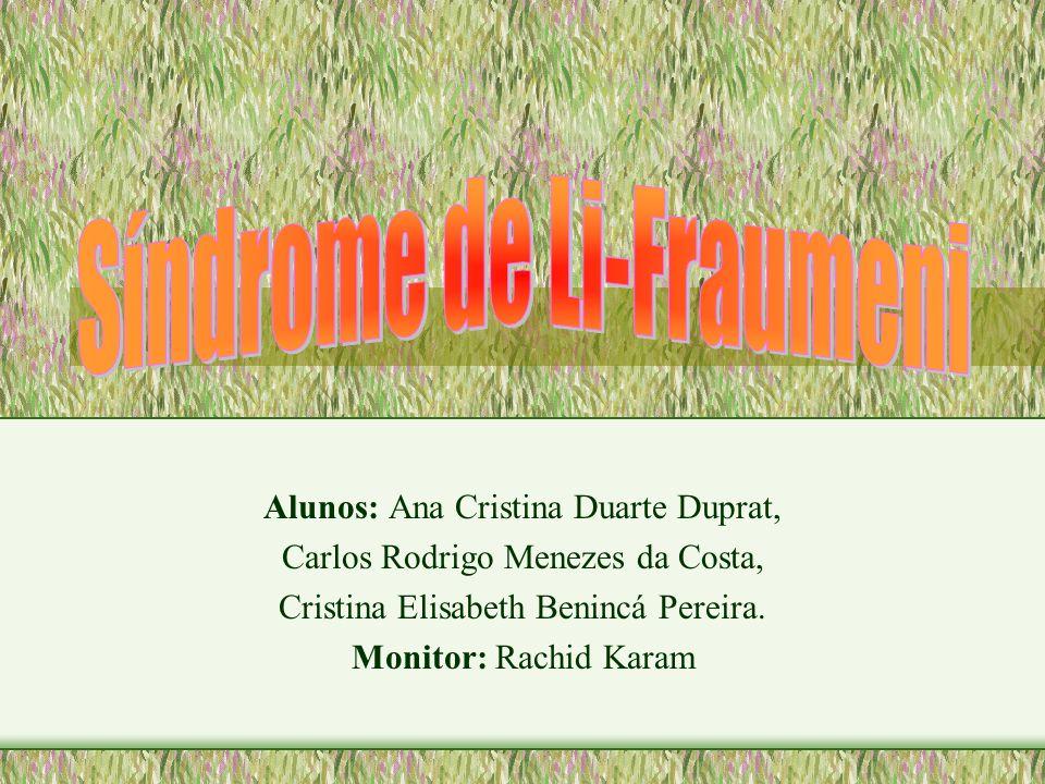 Alunos: Ana Cristina Duarte Duprat, Carlos Rodrigo Menezes da Costa, Cristina Elisabeth Benincá Pereira. Monitor: Rachid Karam