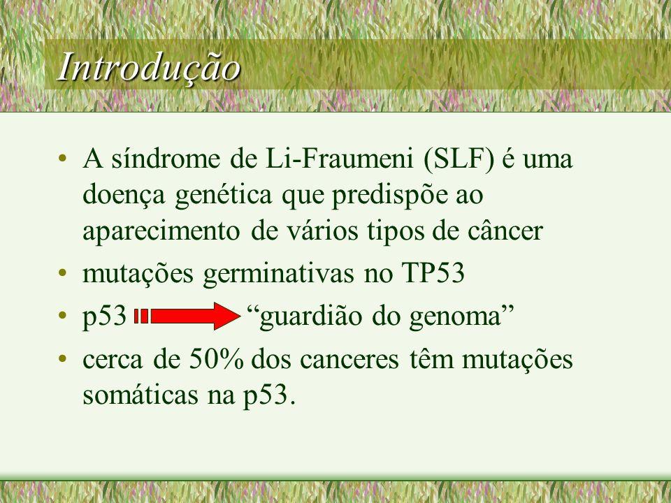 Introdução A síndrome de Li-Fraumeni (SLF) é uma doença genética que predispõe ao aparecimento de vários tipos de câncer mutações germinativas no TP53