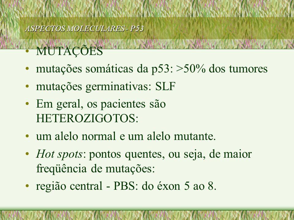 ASPECTOS MOLECULARES - P53 MUTAÇÕES mutações somáticas da p53: >50% dos tumores mutações germinativas: SLF Em geral, os pacientes são HETEROZIGOTOS: u