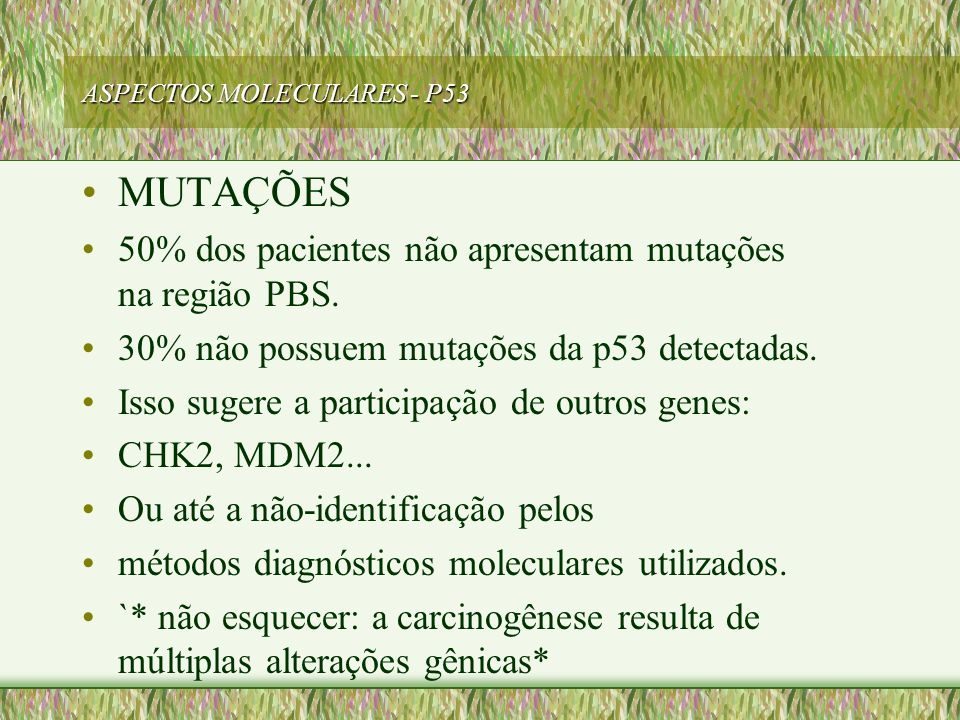 ASPECTOS MOLECULARES - P53 MUTAÇÕES 50% dos pacientes não apresentam mutações na região PBS. 30% não possuem mutações da p53 detectadas. Isso sugere a