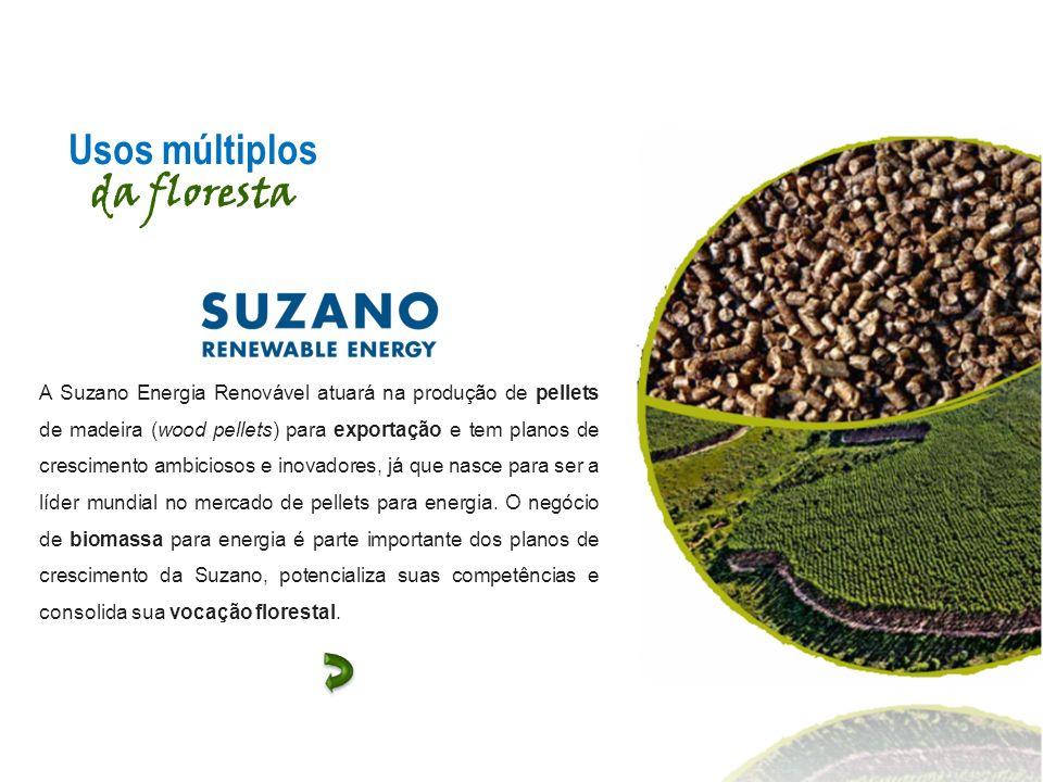 A Suzano Energia Renovável atuará na produção de pellets de madeira (wood pellets) para exportação e tem planos de crescimento ambiciosos e inovadores