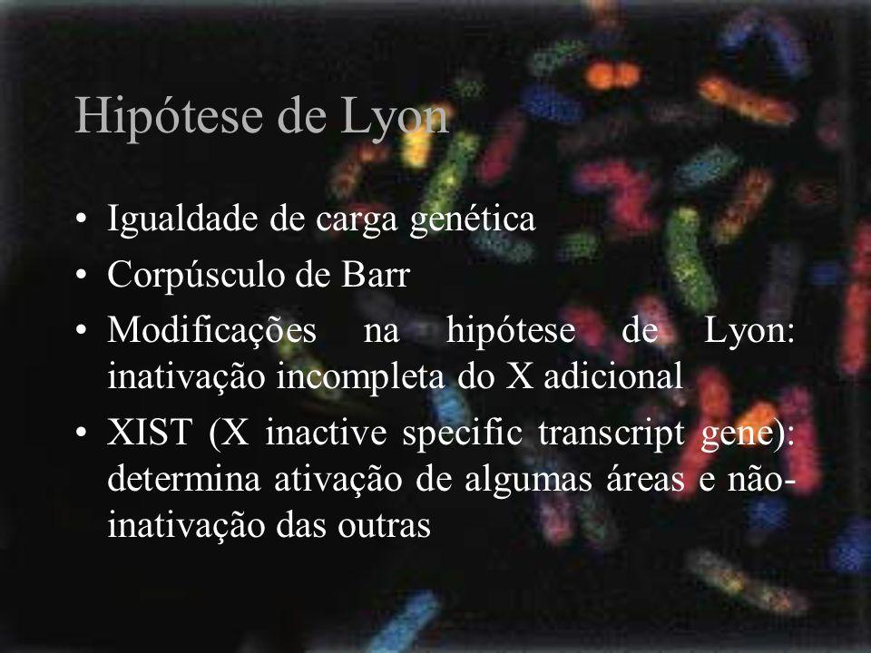 Hipótese de Lyon Igualdade de carga genética Corpúsculo de Barr Modificações na hipótese de Lyon: inativação incompleta do X adicional XIST (X inactiv