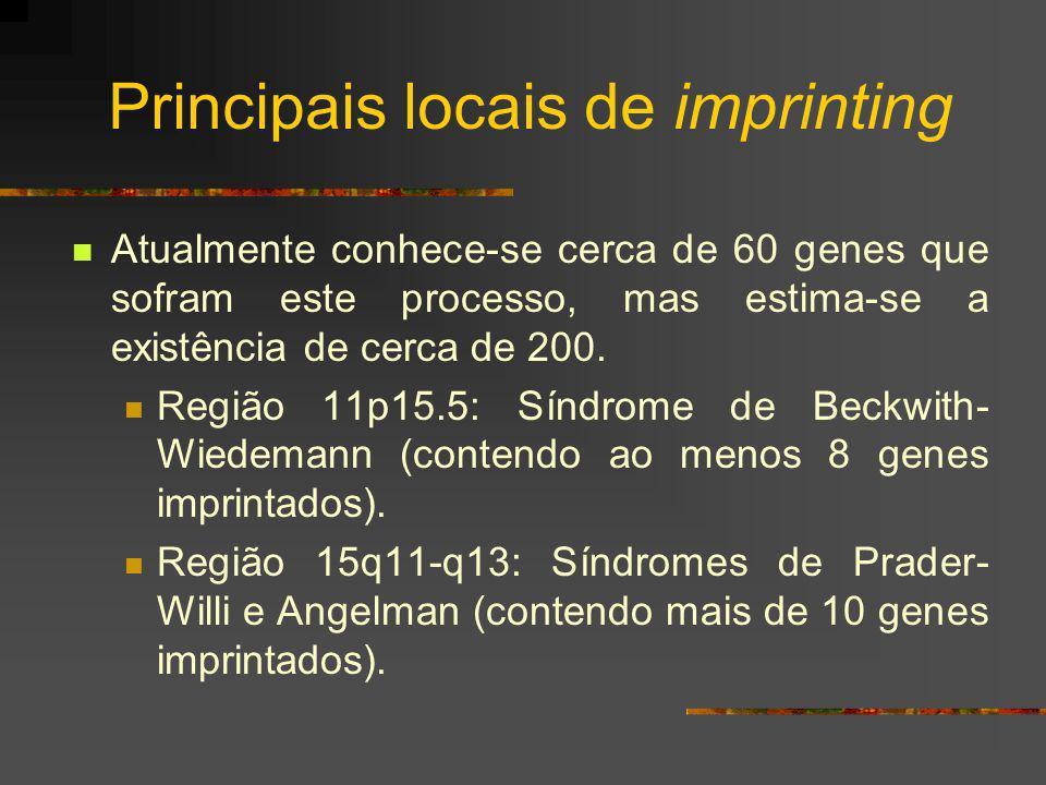 Principais locais de imprinting Atualmente conhece-se cerca de 60 genes que sofram este processo, mas estima-se a existência de cerca de 200. Região 1