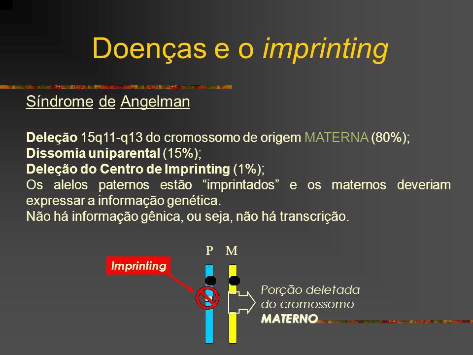 Síndrome de Angelman Deleção 15q11-q13 do cromossomo de origem MATERNA (80%); Dissomia uniparental (15%); Deleção do Centro de Imprinting (1%); Os ale