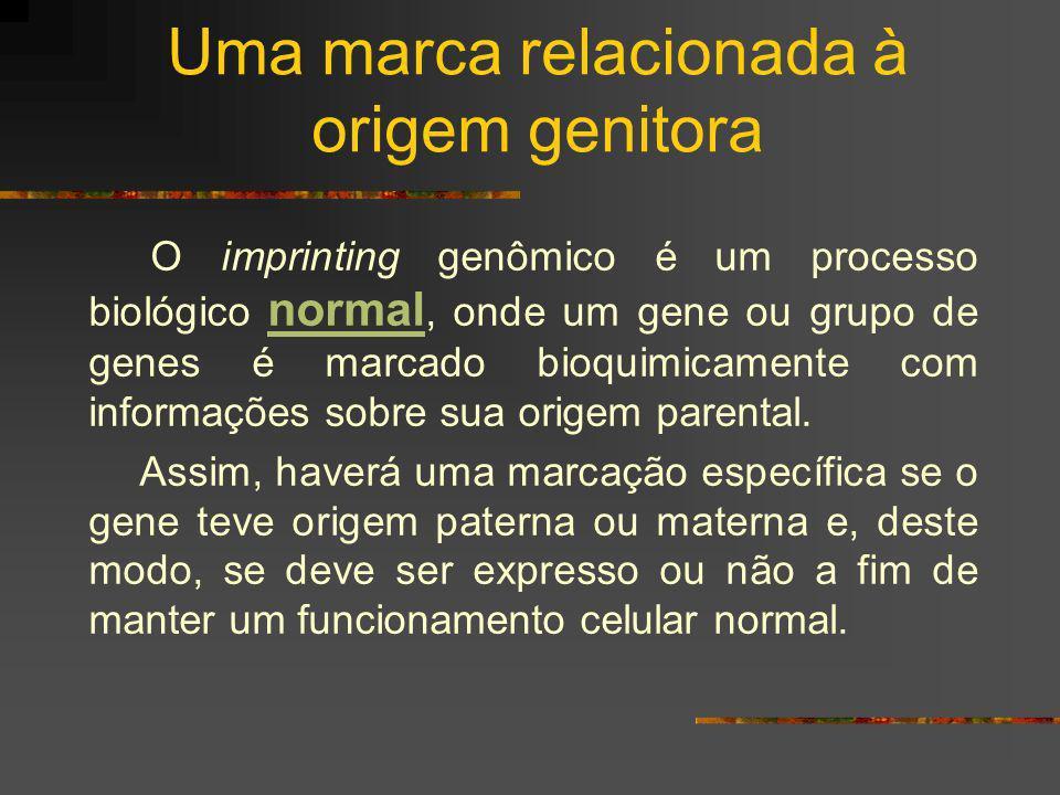 Uma marca relacionada à origem genitora O imprinting genômico é um processo biológico normal, onde um gene ou grupo de genes é marcado bioquimicamente