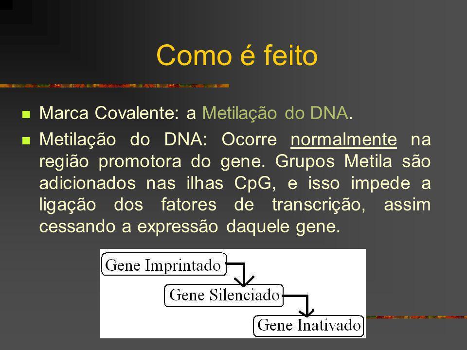 Como é feito Marca Covalente: a Metilação do DNA. Metilação do DNA: Ocorre normalmente na região promotora do gene. Grupos Metila são adicionados nas