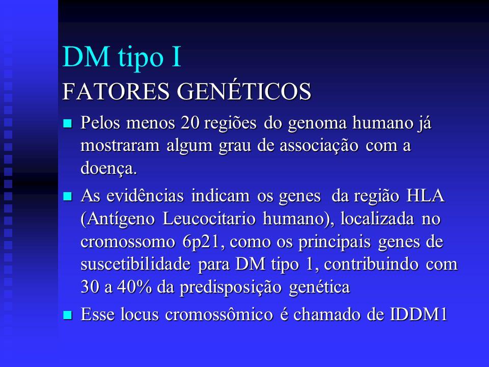 DM tipo I FATORES GENÉTICOS Pelos menos 20 regiões do genoma humano já mostraram algum grau de associação com a doença. Pelos menos 20 regiões do geno