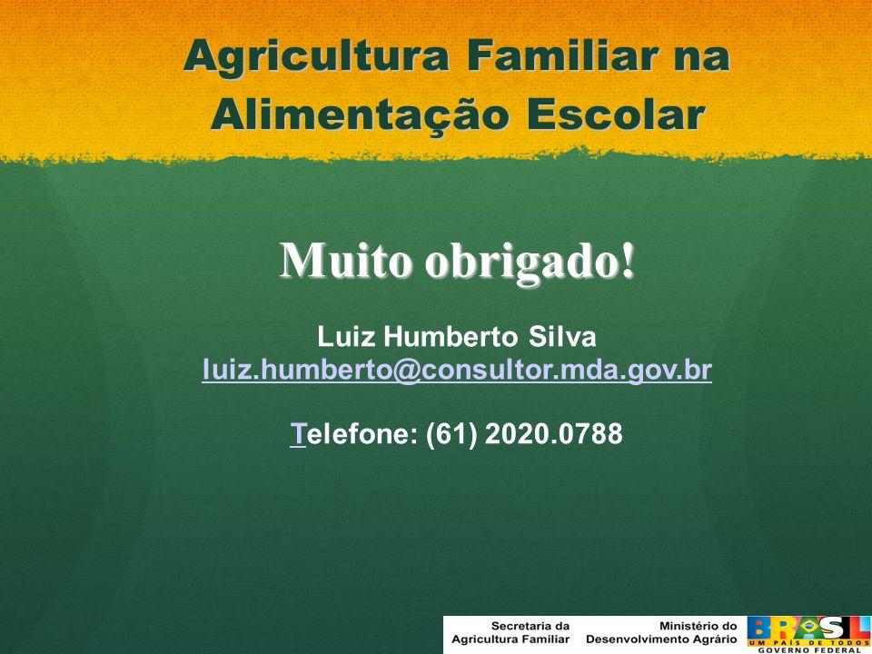Agricultura Familiar na Alimentação Escolar Muito obrigado! Luiz Humberto Silva luiz.humberto@consultor.mda.gov.br TTelefone: (61) 2020.0788