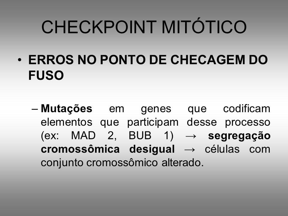 CHECKPOINT MITÓTICO ERROS NO PONTO DE CHECAGEM DO FUSO –Mutações em genes que codificam elementos que participam desse processo (ex: MAD 2, BUB 1) seg