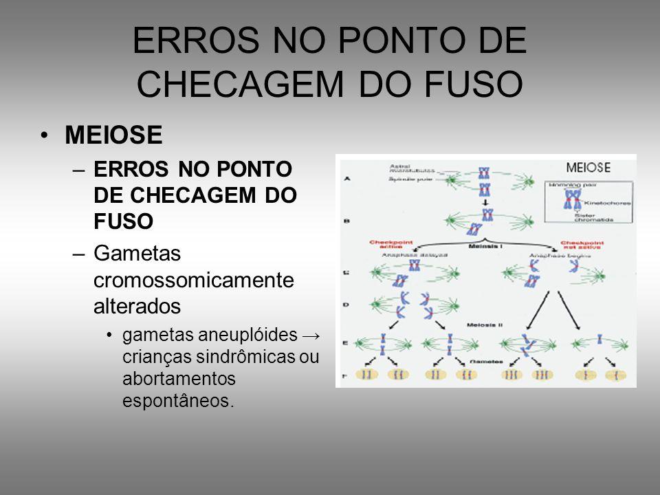 ERROS NO PONTO DE CHECAGEM DO FUSO MEIOSE –ERROS NO PONTO DE CHECAGEM DO FUSO –Gametas cromossomicamente alterados gametas aneuplóides crianças sindrô