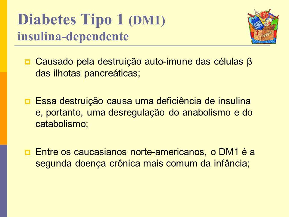 Contínua produção de insulina pelo pâncreas; Incapacidade de absorção pelas células musculares e adiposas.