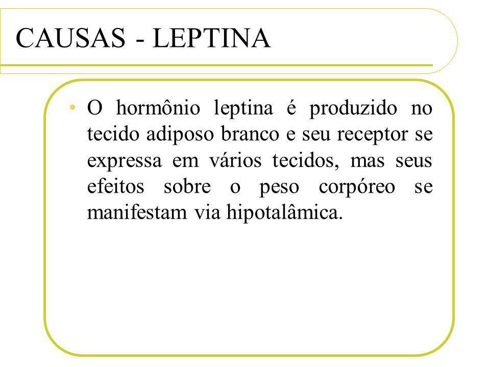 CAUSAS - LEPTINA O hormônio leptina é produzido no tecido adiposo branco e seu receptor se expressa em vários tecidos, mas seus efeitos sobre o peso c