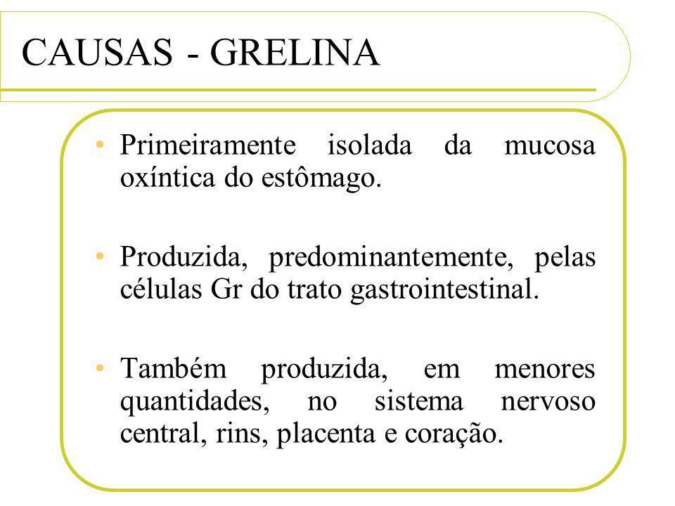 CAUSAS - GRELINA Primeiramente isolada da mucosa oxíntica do estômago. Produzida, predominantemente, pelas células Gr do trato gastrointestinal. També