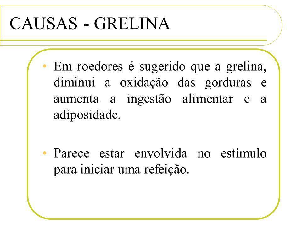 CAUSAS - GRELINA Em roedores é sugerido que a grelina, diminui a oxidação das gorduras e aumenta a ingestão alimentar e a adiposidade. Parece estar en