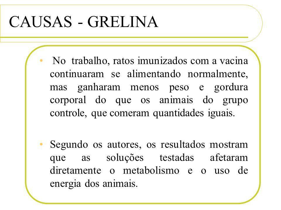 CAUSAS - GRELINA No trabalho, ratos imunizados com a vacina continuaram se alimentando normalmente, mas ganharam menos peso e gordura corporal do que