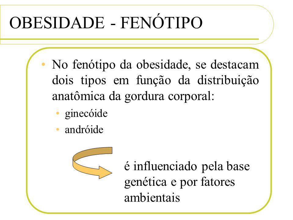 OBESIDADE - FENÓTIPO No fenótipo da obesidade, se destacam dois tipos em função da distribuição anatômica da gordura corporal: ginecóide andróide é in