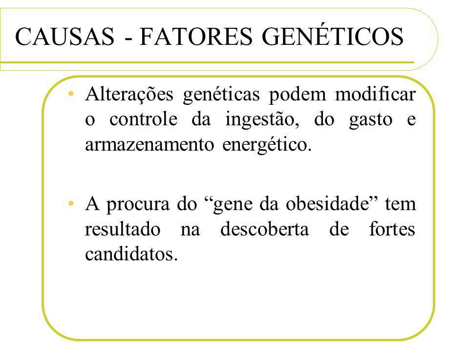 CAUSAS - FATORES GENÉTICOS Alterações genéticas podem modificar o controle da ingestão, do gasto e armazenamento energético. A procura do gene da obes