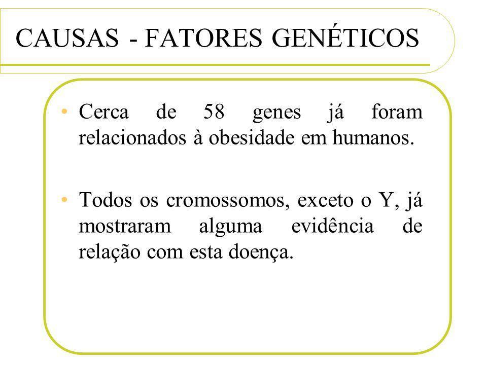 CAUSAS - FATORES GENÉTICOS Cerca de 58 genes já foram relacionados à obesidade em humanos. Todos os cromossomos, exceto o Y, já mostraram alguma evidê