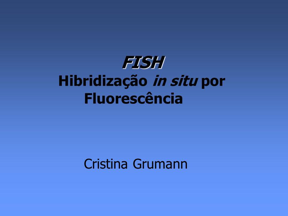 FISH O que é.É a técnica de citogenética molecular mais comumente utilizada.