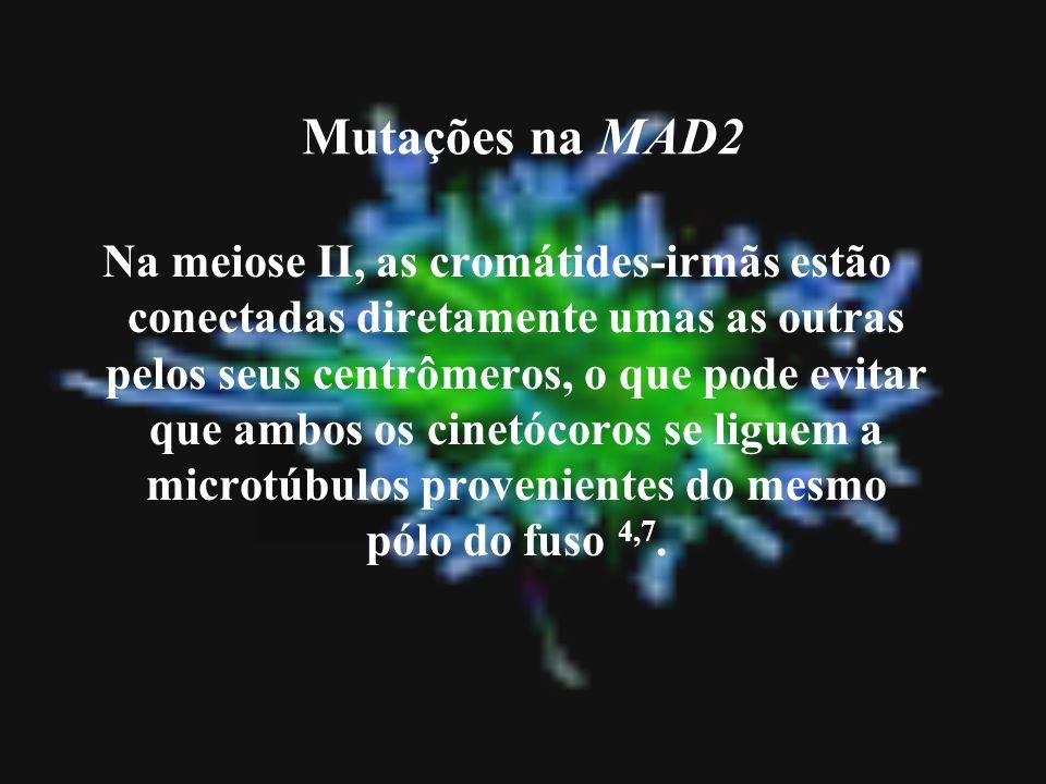 Mutações na MAD2 Na meiose II, as cromátides-irmãs estão conectadas diretamente umas as outras pelos seus centrômeros, o que pode evitar que ambos os