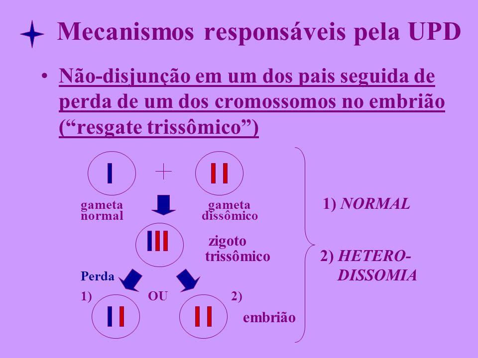 Mecanismos responsáveis pela UPD Não-disjunção em um dos pais seguida de perda de um dos cromossomos no embrião (resgate trissômico) gameta gameta 1)