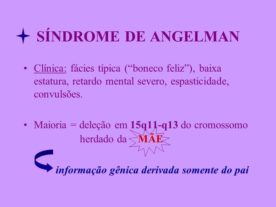 SÍNDROME DE ANGELMAN Clínica: fácies típica (boneco feliz), baixa estatura, retardo mental severo, espasticidade, convulsões. Maioria = deleção em 15q