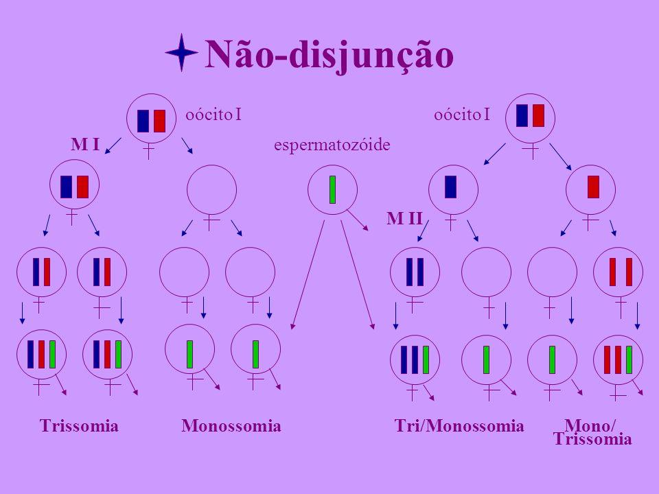 Não-disjunção oócito I oócito I M I espermatozóide M II Trissomia Monossomia Tri/Monossomia Mono/ Trissomia