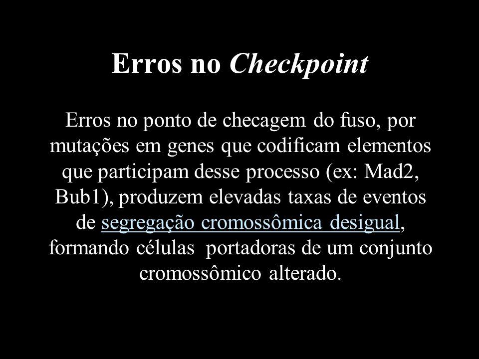Erros no Checkpoint Erros no ponto de checagem do fuso, por mutações em genes que codificam elementos que participam desse processo (ex: Mad2, Bub1),