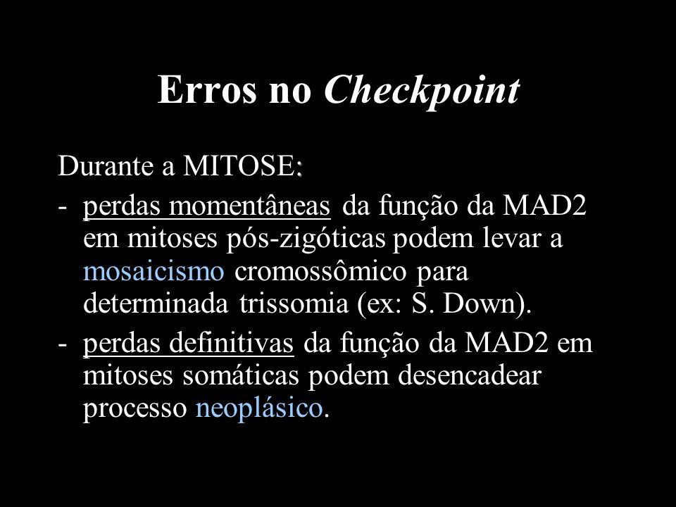 Erros no Checkpoint : Durante a MITOSE: -perdas momentâneas da função da MAD2 em mitoses pós-zigóticas podem levar a mosaicismo cromossômico para dete