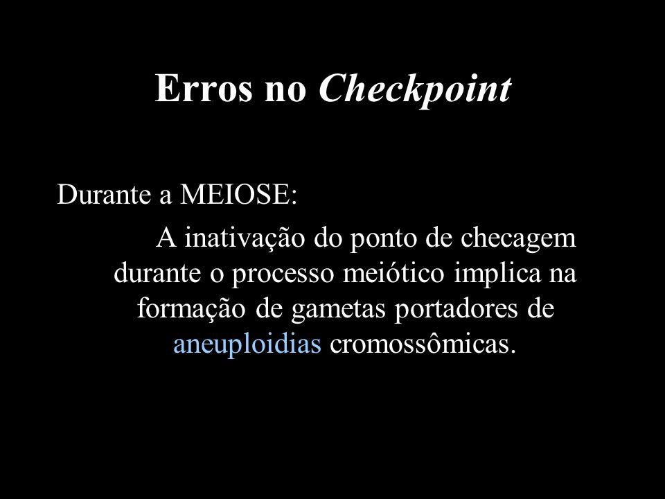 Erros no Checkpoint Durante a MEIOSE: A inativação do ponto de checagem durante o processo meiótico implica na formação de gametas portadores de aneup