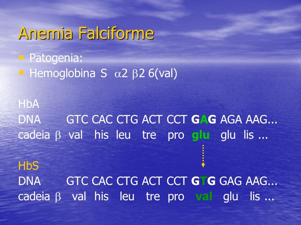 Patogenia: Hemoglobina S 2 2 6(val) HbA DNA GTC CAC CTG ACT CCT GAG AGA AAG... cadeia val his leu tre pro glu glu lis... HbS DNA GTC CAC CTG ACT CCT G