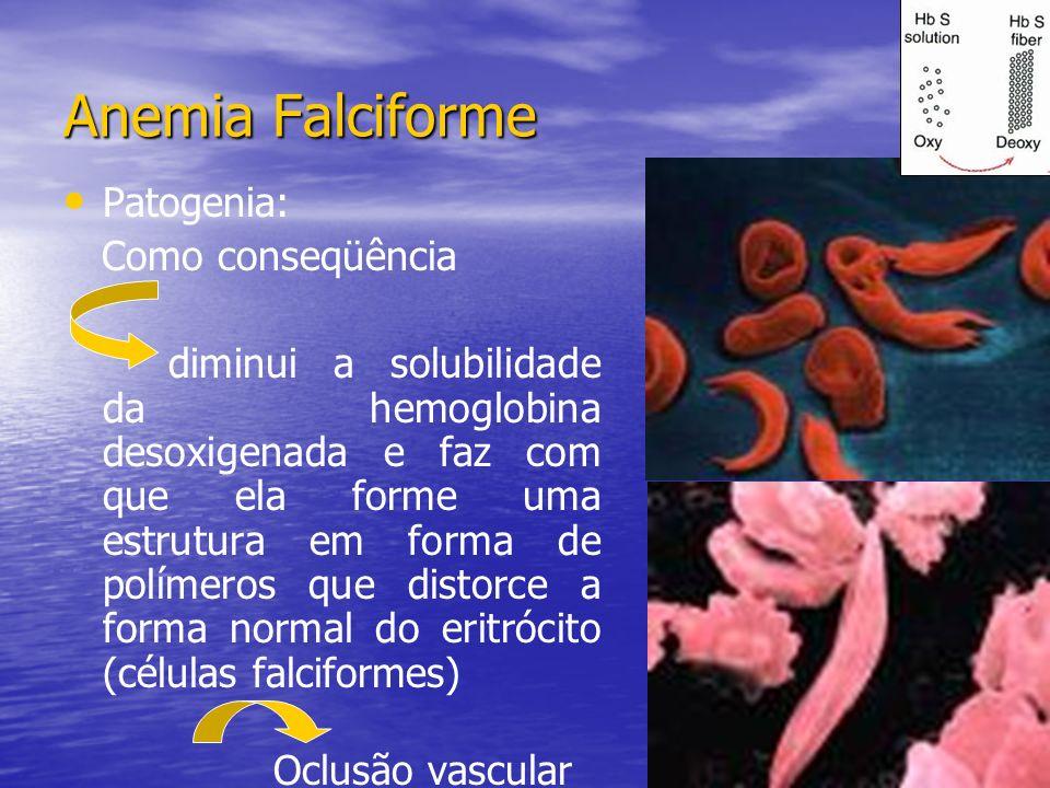Patogenia: Como conseqüência diminui a solubilidade da hemoglobina desoxigenada e faz com que ela forme uma estrutura em forma de polímeros que distor