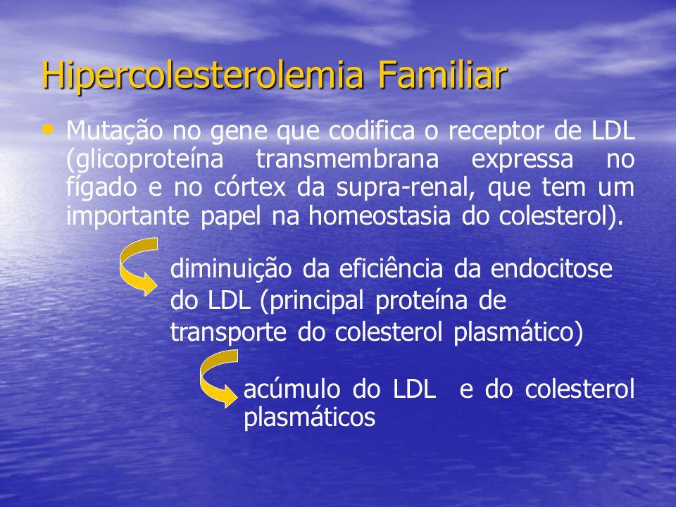 Mutação no gene que codifica o receptor de LDL (glicoproteína transmembrana expressa no fígado e no córtex da supra-renal, que tem um importante papel