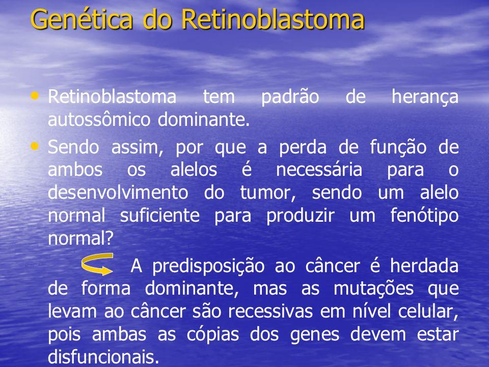 Retinoblastoma tem padrão de herança autossômico dominante.