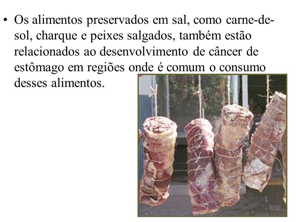 Os alimentos preservados em sal, como carne-de- sol, charque e peixes salgados, também estão relacionados ao desenvolvimento de câncer de estômago em