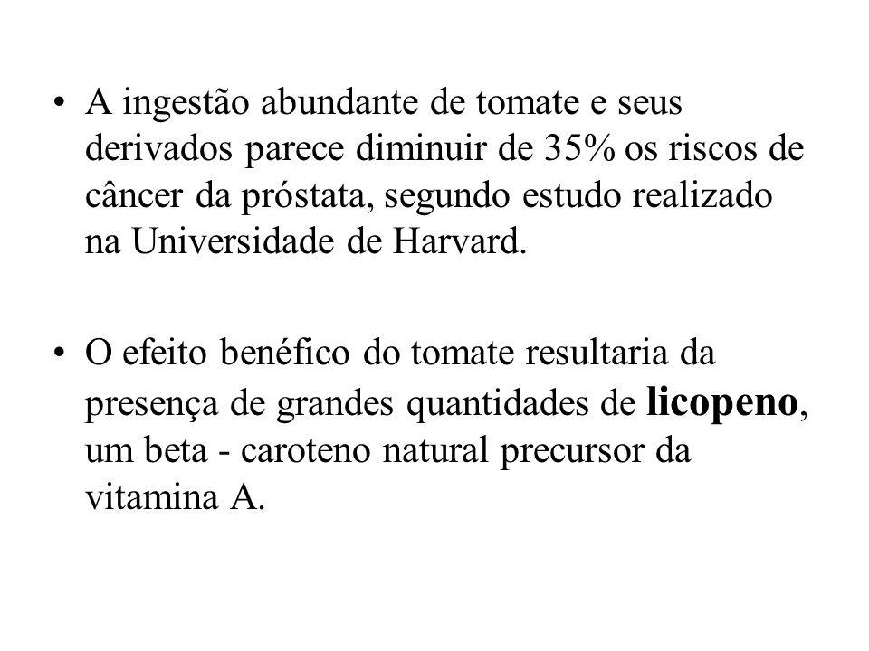 A ingestão abundante de tomate e seus derivados parece diminuir de 35% os riscos de câncer da próstata, segundo estudo realizado na Universidade de Ha