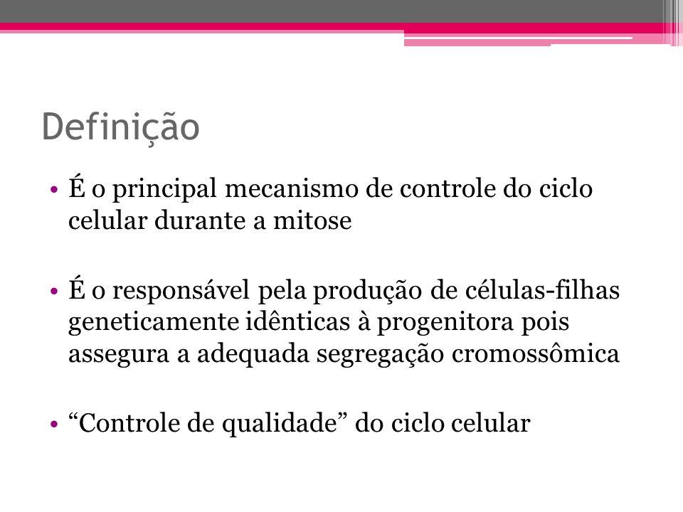 Definição É o principal mecanismo de controle do ciclo celular durante a mitose É o responsável pela produção de células-filhas geneticamente idêntica