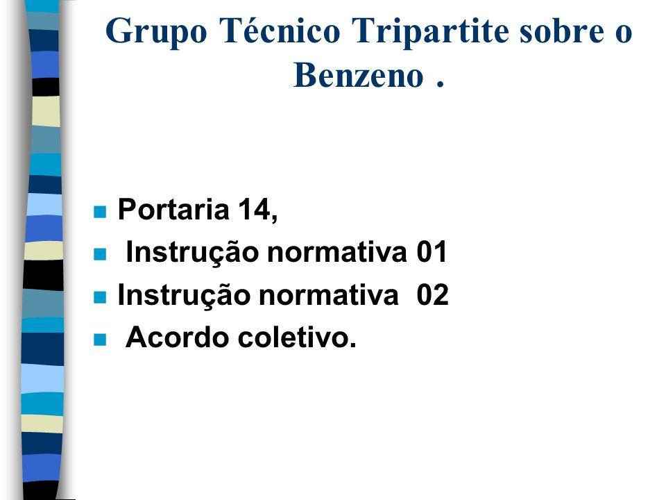 n O grupo produziu : –BENZENO - Subsídios técnicos à Secretaria da Segurança e Saúde no Trabalho (SSST/MTB) n o benzeno foi introduzido na lista de su
