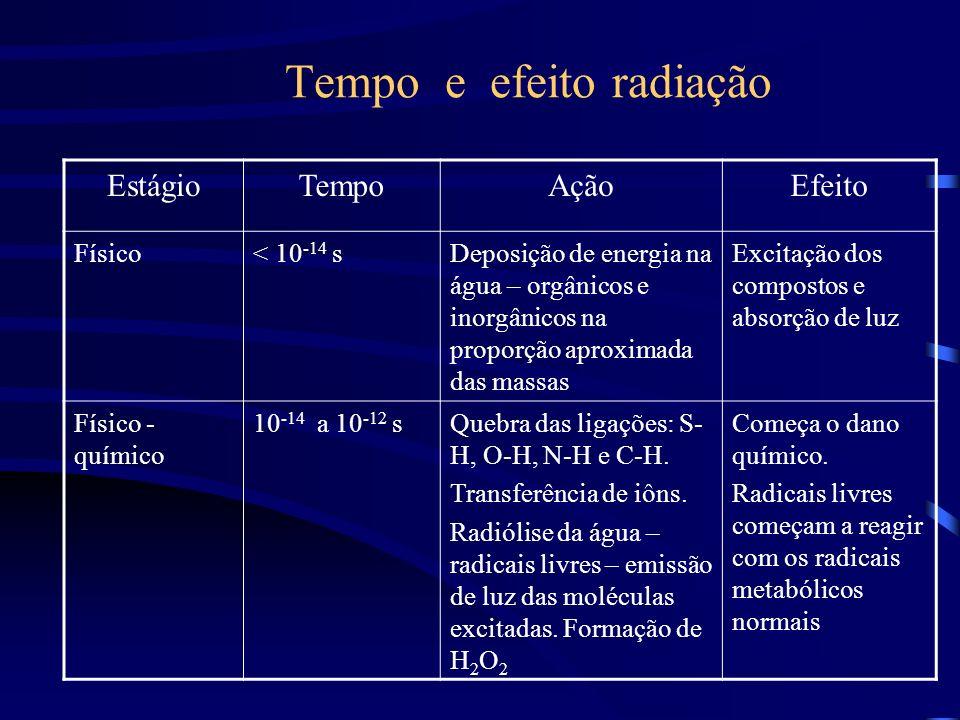 Tempo e efeito radiação EstágioTempoAçãoEfeito Físico< 10 -14 sDeposição de energia na água – orgânicos e inorgânicos na proporção aproximada das massas Excitação dos compostos e absorção de luz Físico - químico 10 -14 a 10 -12 sQuebra das ligações: S- H, O-H, N-H e C-H.