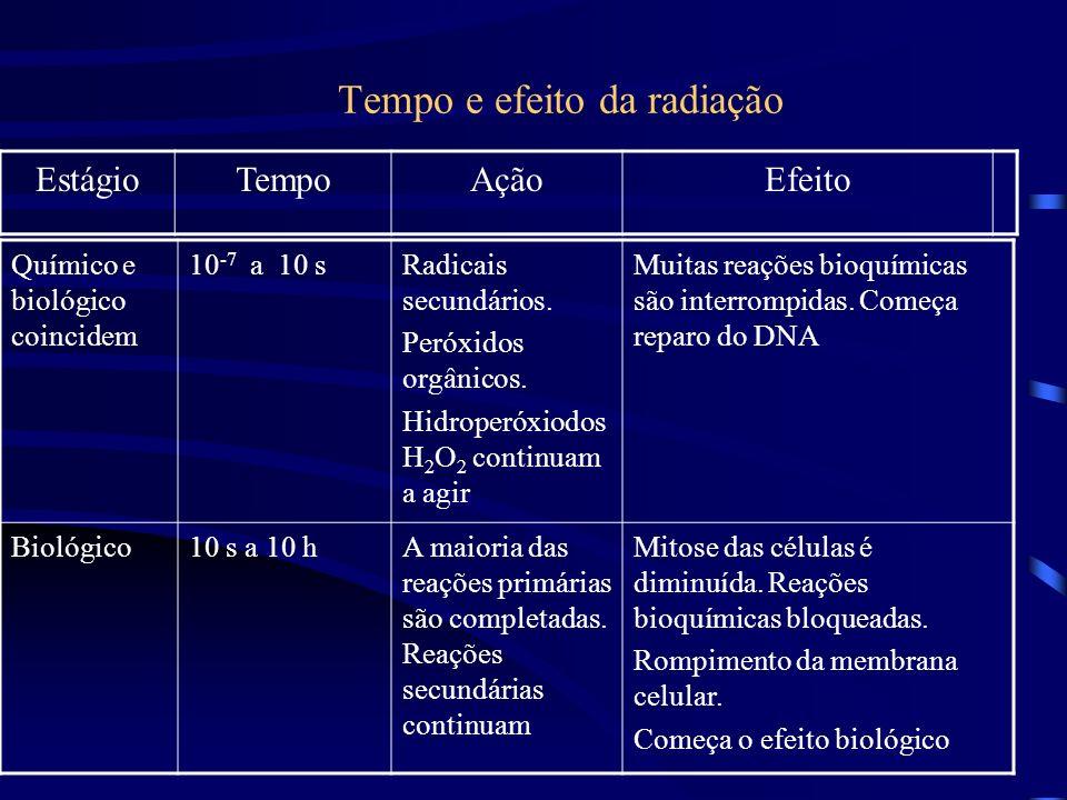 Tempo e efeito da radiação Químico e biológico coincidem 10 -7 a 10 sRadicais secundários.