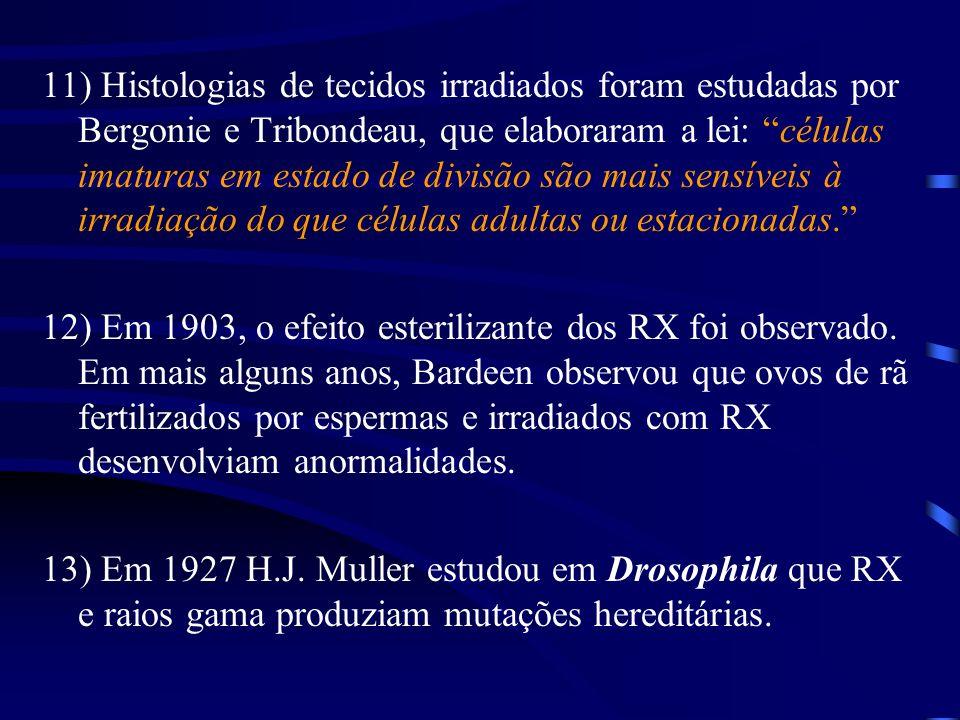 11) Histologias de tecidos irradiados foram estudadas por Bergonie e Tribondeau, que elaboraram a lei: células imaturas em estado de divisão são mais sensíveis à irradiação do que células adultas ou estacionadas.