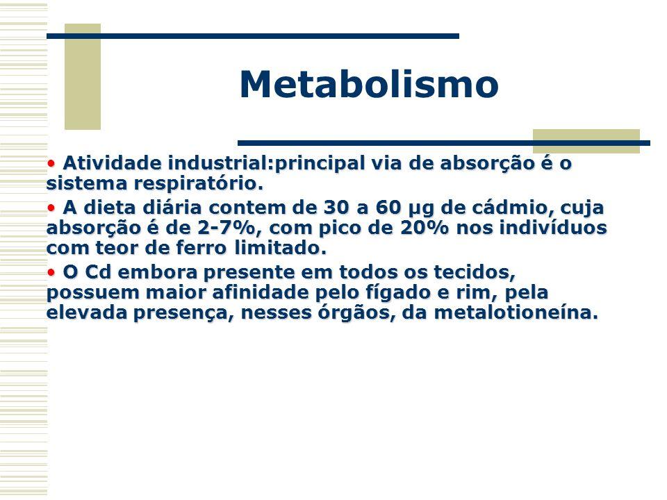 Metabolismo Atividade industrial:principal via de absorção é o sistema respiratório. Atividade industrial:principal via de absorção é o sistema respir
