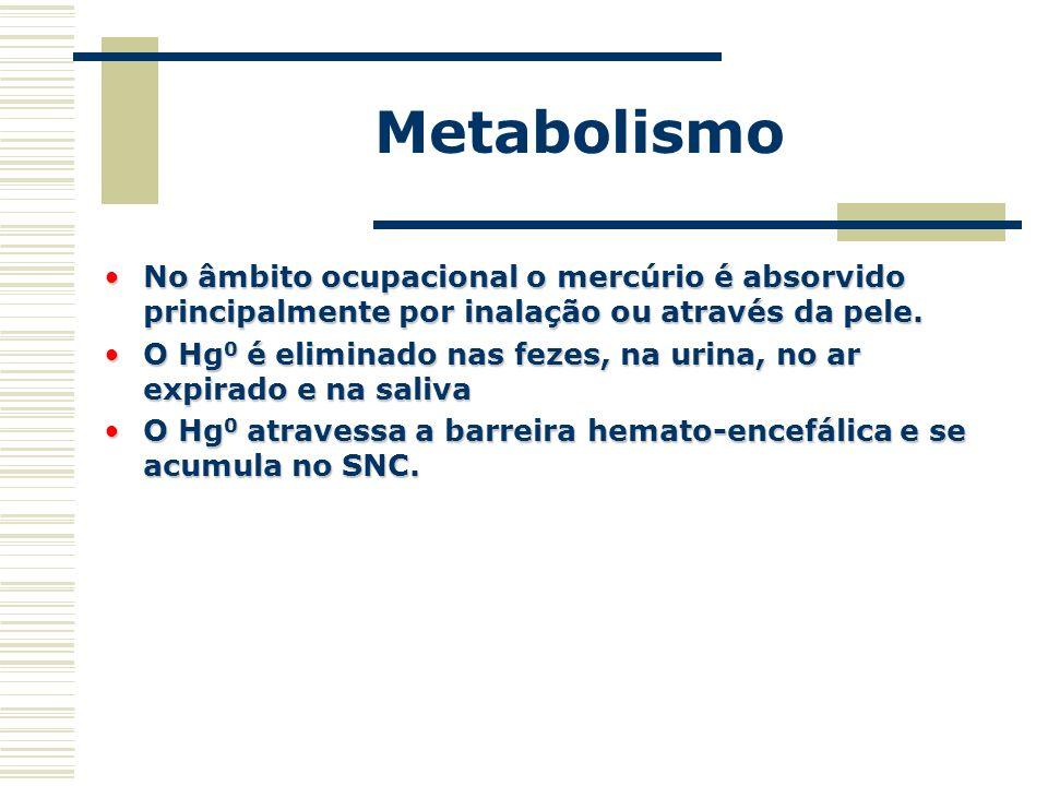 Metabolismo No âmbito ocupacional o mercúrio é absorvido principalmente por inalação ou através da pele.No âmbito ocupacional o mercúrio é absorvido p