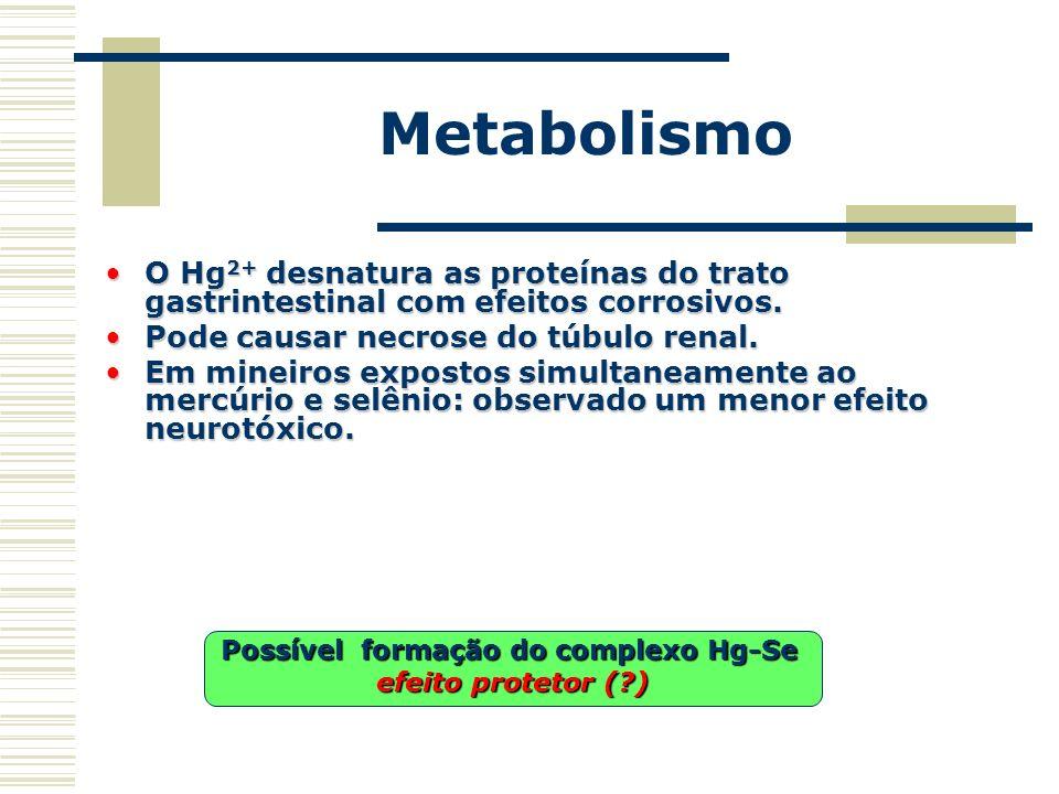 Metabolismo O Hg 2+ desnatura as proteínas do trato gastrintestinal com efeitos corrosivos.O Hg 2+ desnatura as proteínas do trato gastrintestinal com